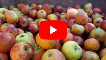 Video van mobiele sappers van de Achterhoekse SapPers